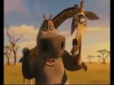 Мадагаскар 2 (смех Глории)